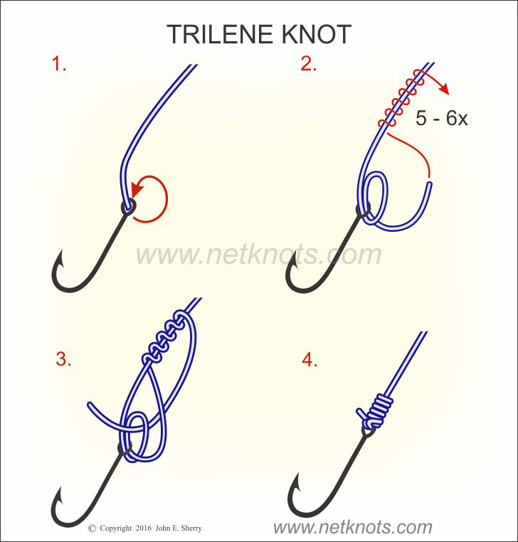 Trilene knot how to tie a trilene knot fishing knots for Fishing hook knots
