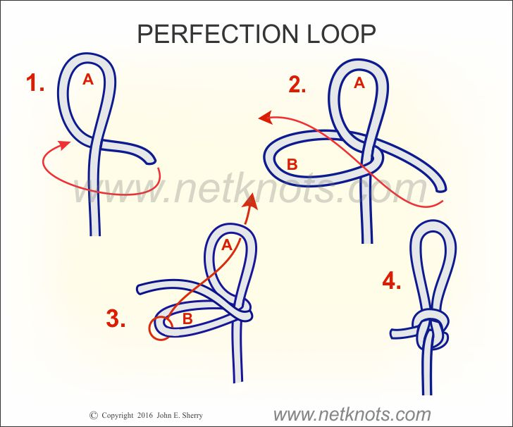 perfection loop how to tie a perfection loop fishing knots. Black Bedroom Furniture Sets. Home Design Ideas