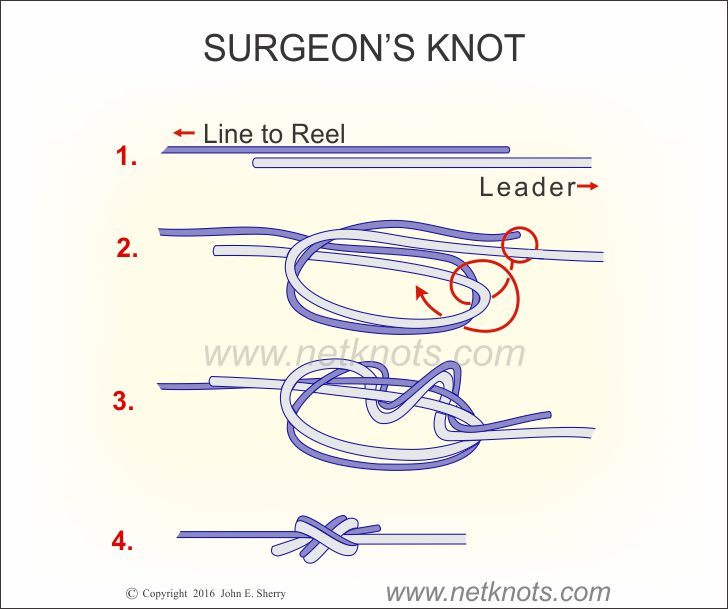 Surgeons knot how to tie a surgeon 39 s knot fishing knots for Fishing line leader
