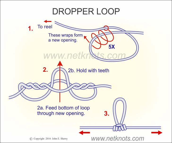 Dropper loop how to tie a dropper loop fishing knots for Tying fishing line to reel