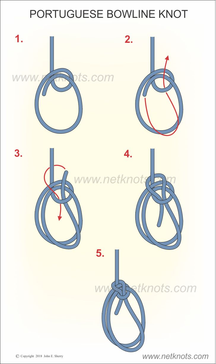 How to Tie a Bowline Knot foto