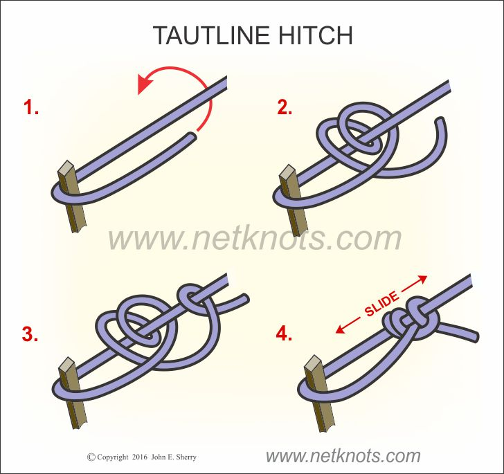 Tautline Hitch Knot Tying Instructions  sc 1 st  NetKnots & Tautline Hitch - How to tie a Tautline Hitch