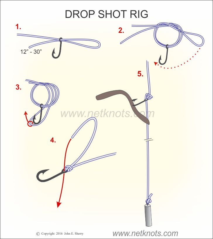 Drop Shot Rig - How to tie a Drop Shot Rig | Fishing Knots