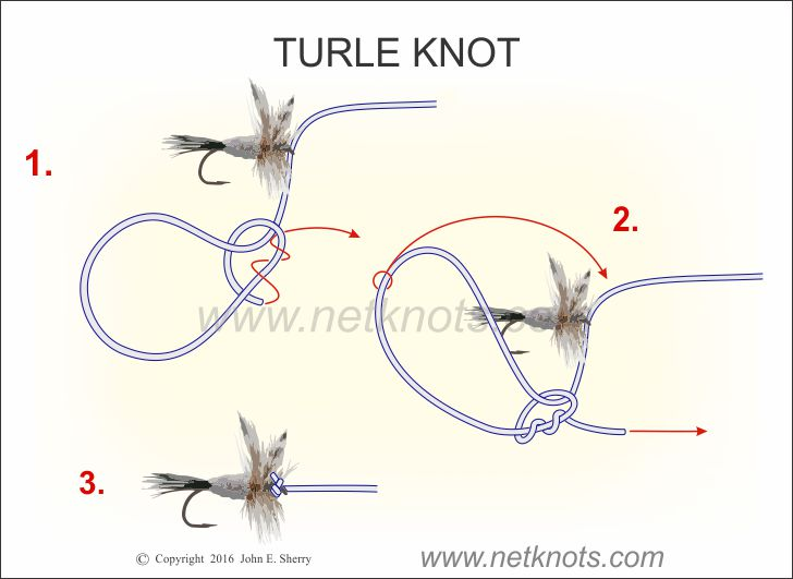 Turle Knot