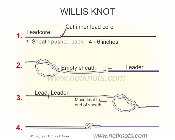 Willis Knot