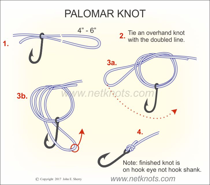 palomar knot how to tie a palomar knot fishing knots