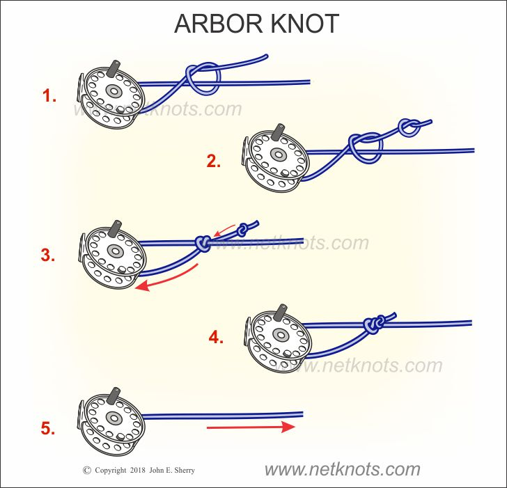 How to tie the Arbor Knot animated and illustrated